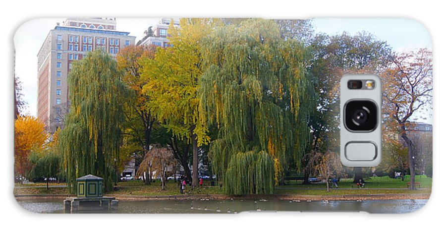 Boston Galaxy S8 Case featuring the photograph Trees At The Boston Public Garden by Erich Kirchubel