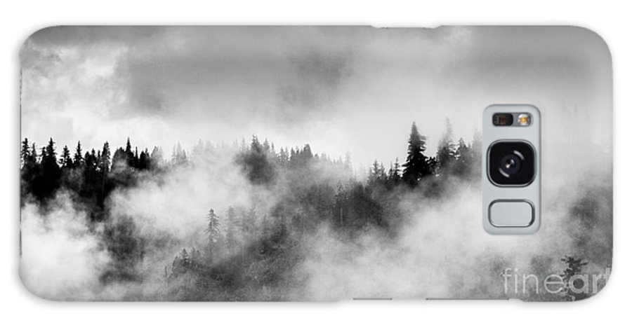 Forest Galaxy S8 Case featuring the photograph Trees In Fog by Tim Tolok