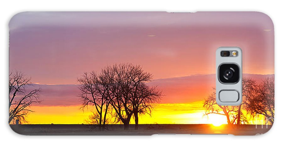Sunrise Galaxy S8 Case featuring the photograph Trees Watching The Sunrise Panorama View by James BO Insogna
