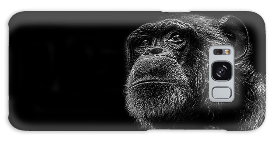 Chimpanzee Galaxy Case featuring the photograph Trepidation by Paul Neville