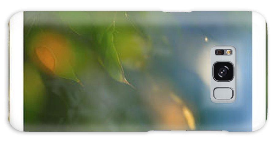 Triptico Hojas Galaxy S8 Case featuring the photograph Triptico Hojas Luminosas by Guido Montanes Castillo