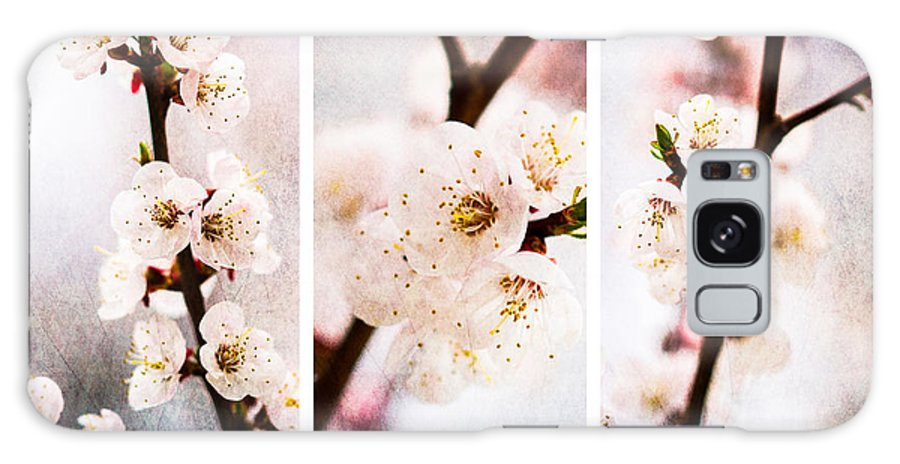 Flower Galaxy S8 Case featuring the photograph Triptych Light Of Spring 2 by Alexander Senin