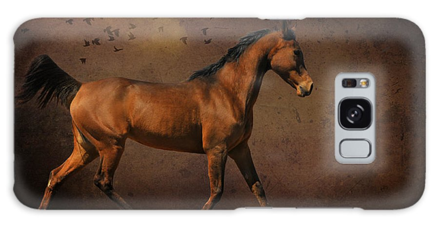 Photo Manipulation Galaxy S8 Case featuring the photograph Trotting Into The Night by Karen Slagle