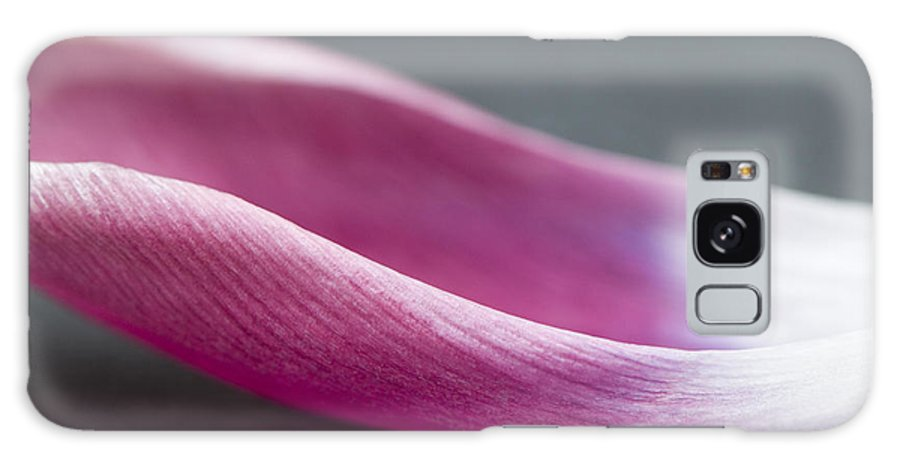 Abstract Galaxy S8 Case featuring the photograph Tulip Boat by Anne Gilbert