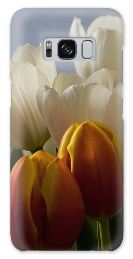 Nature Galaxy S8 Case featuring the photograph Tulip Bouquet by Michael Friedman