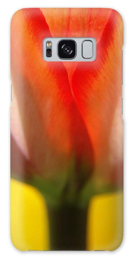 Tulips Galaxy S8 Case featuring the photograph Tulip by Jeri lyn Chevalier