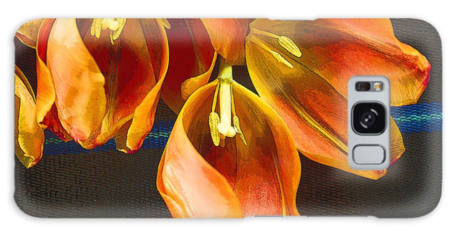 Color Galaxy S8 Case featuring the photograph Tulip Study 2 by Jeanette French