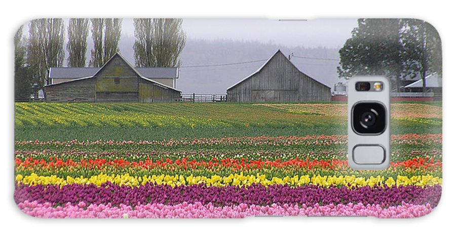 Tulips Galaxy S8 Case featuring the photograph Tulip Town Barns by Louise Magno