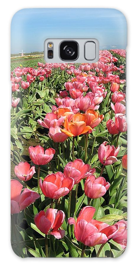 Tulips Galaxy S8 Case featuring the photograph Tulips Mt Hood by Marlene Rose Besso