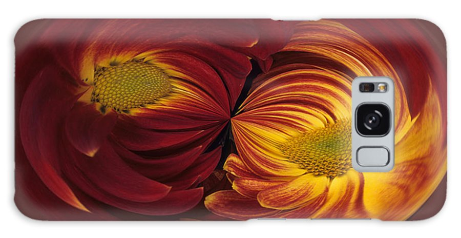 Abstract Galaxy Case featuring the photograph Twin Gerbera Abstract by Keith Gondron