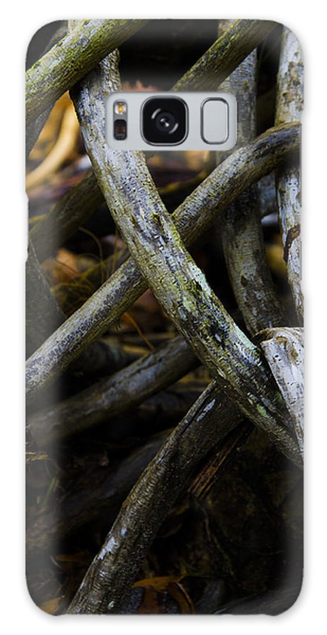 Roots Galaxy S8 Case featuring the photograph Twisted Nature I by Anna Azmitia