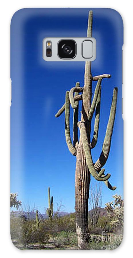 Sahuaro Galaxy S8 Case featuring the photograph Twisted Sentinal by Kathy McClure