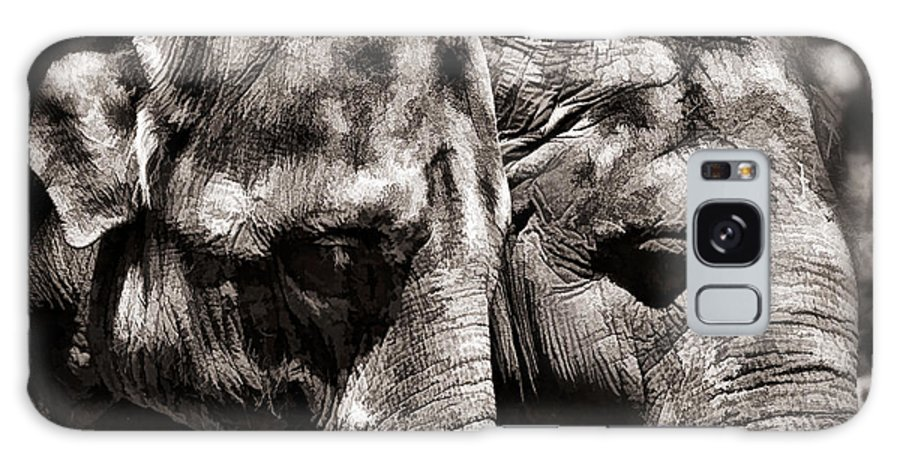 Elephant Galaxy S8 Case featuring the photograph Two Elephants by Blake Richards