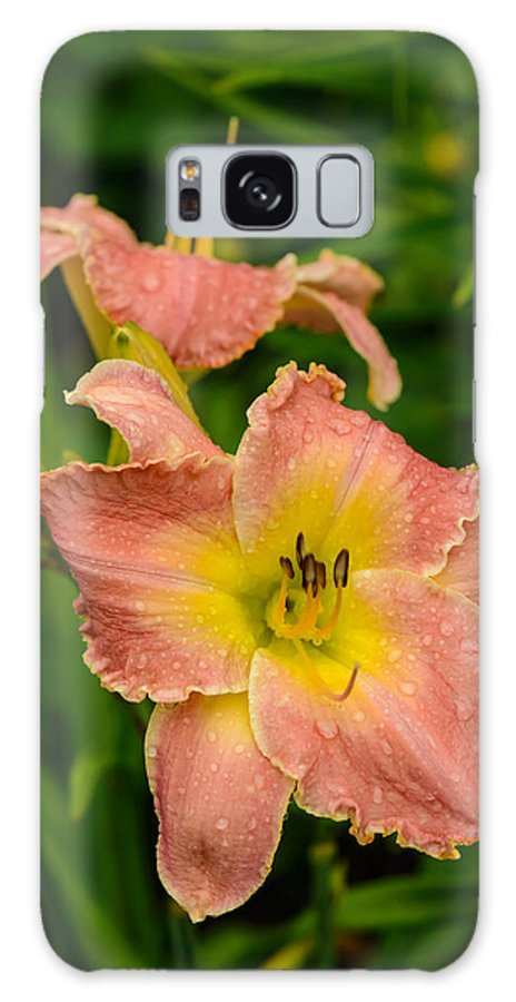 Flowers Galaxy S8 Case featuring the photograph Two Lilies by Robert Mitchell