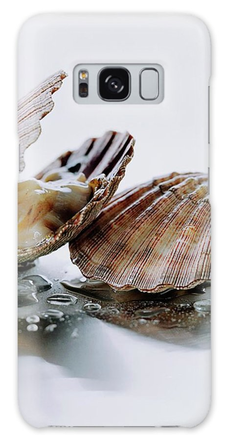 Cooking Galaxy S8 Case featuring the photograph Two Scallops by Romulo Yanes