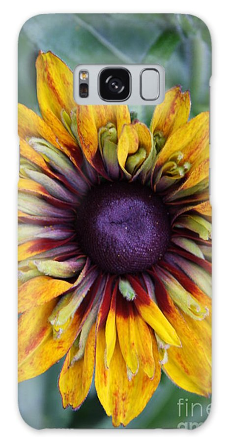 Sunflower Galaxy S8 Case featuring the photograph Unique Sunflower by Christiane Schulze Art And Photography