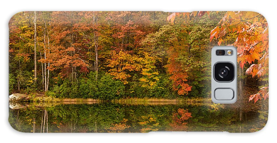 Foliage Galaxy S8 Case featuring the photograph Untouched by Jim Southwell