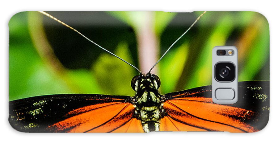 Spotted Tiger Longwing Galaxy S8 Case featuring the photograph Up Close And Personal by Grace Grogan