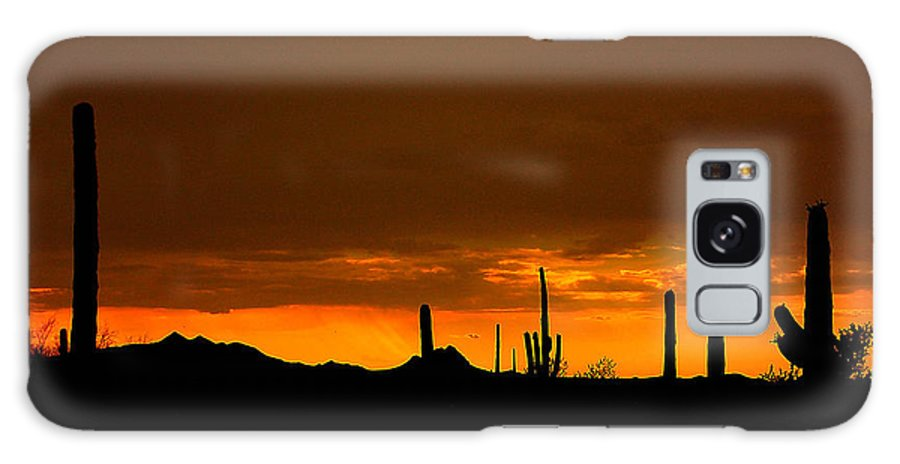 Arizona Galaxy S8 Case featuring the photograph Valley Of The Sun by Jim Southwell