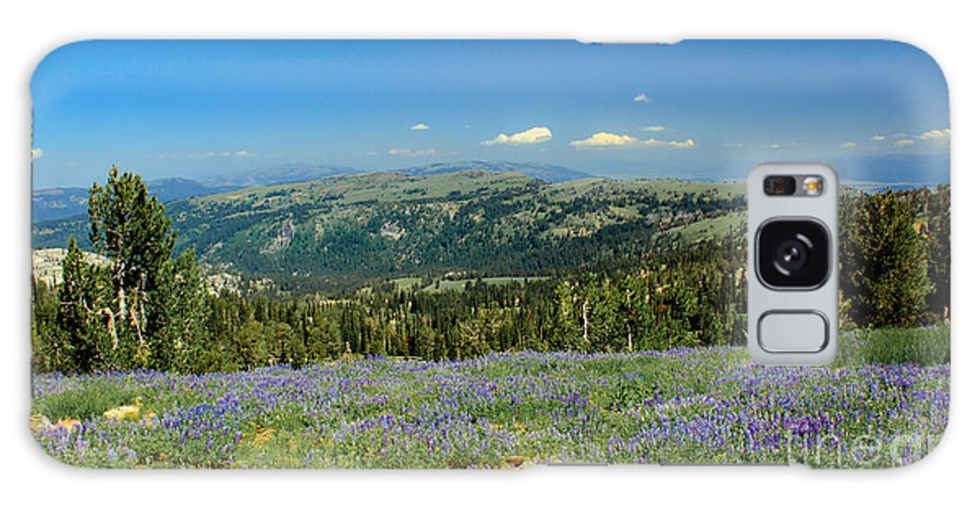 Southwest Idaho Galaxy S8 Case featuring the photograph Vast View And Lupine by Robert Bales