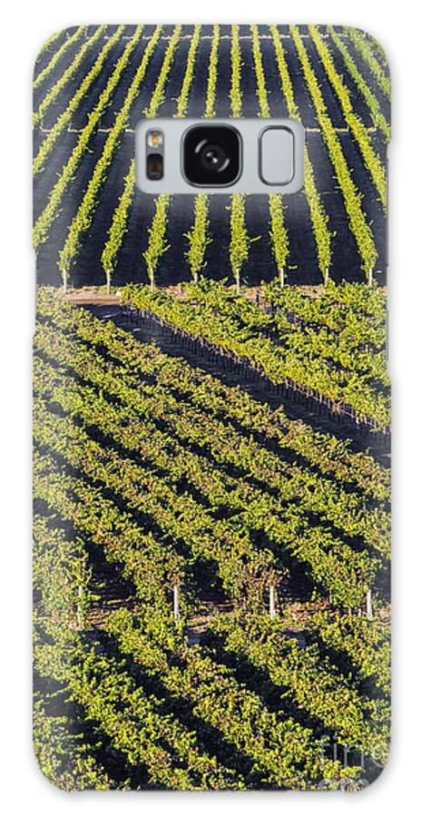 Napa Valley California Winery Wineries Grape Vine Vines Tree Trees Road Roads Street Streets Vertical Row Diagonal Rows Vineyard Vineyards Landscape Landscapes Galaxy S8 Case featuring the photograph Vertical And Diagonal by Bob Phillips