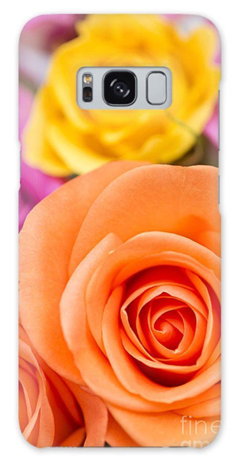 Arranged Galaxy S8 Case featuring the photograph Very Bold Bunch by Anne Gilbert