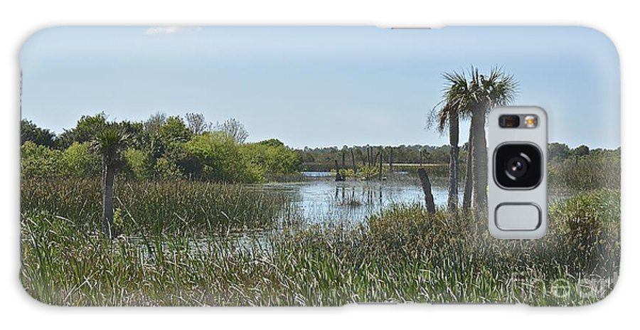 Wetlands Galaxy S8 Case featuring the photograph Viera Wetlands by Carol Bradley