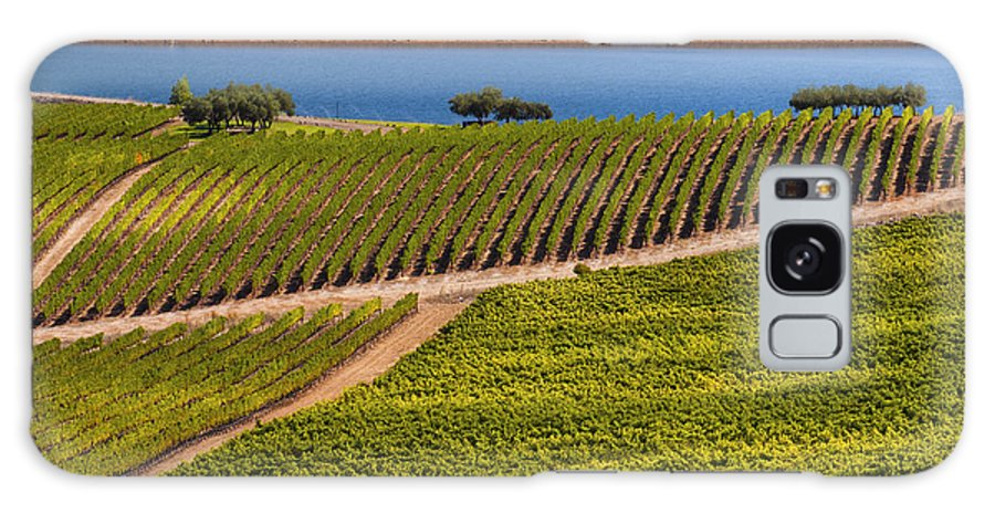 Napa Valley California Wineries Winery Grapevine Grapevines Row Rows Landscape Landscapes Plant Plants Vineyard Vineyards Pond Ponds Lake Lakes Water Galaxy S8 Case featuring the photograph Vineyard On A Lake by Bob Phillips