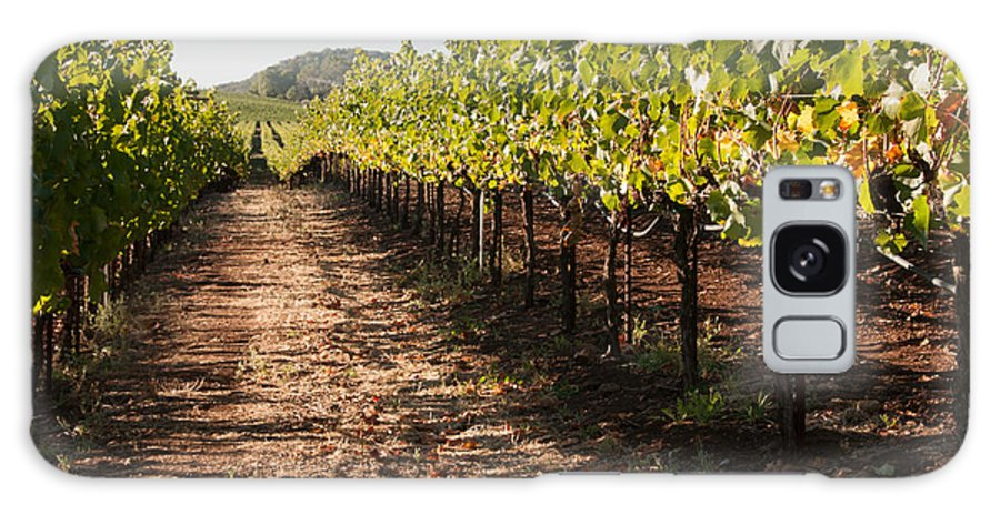 Soil Galaxy S8 Case featuring the photograph Vineyard Soil Of Sonoma by Kent Sorensen