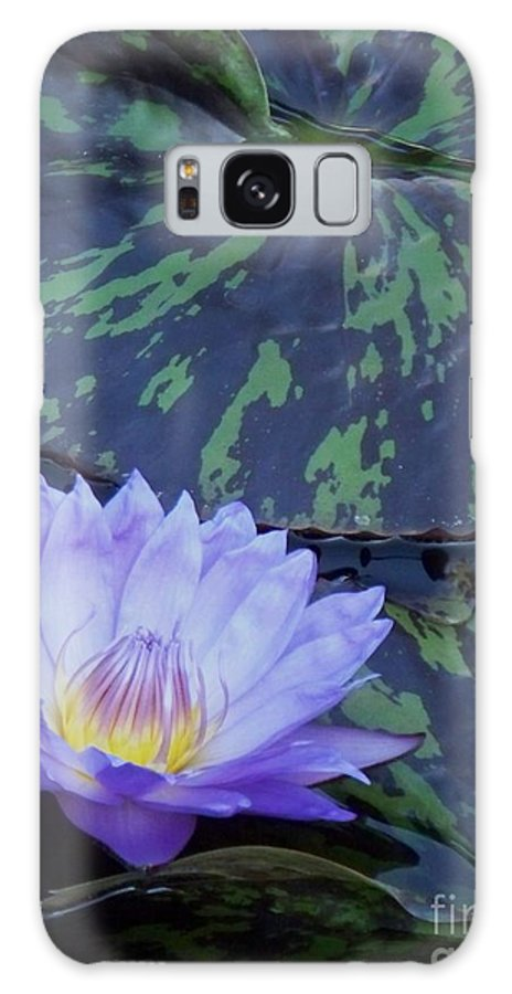 Water Lilies Galaxy S8 Case featuring the photograph Violet Lily by Eric Schiabor