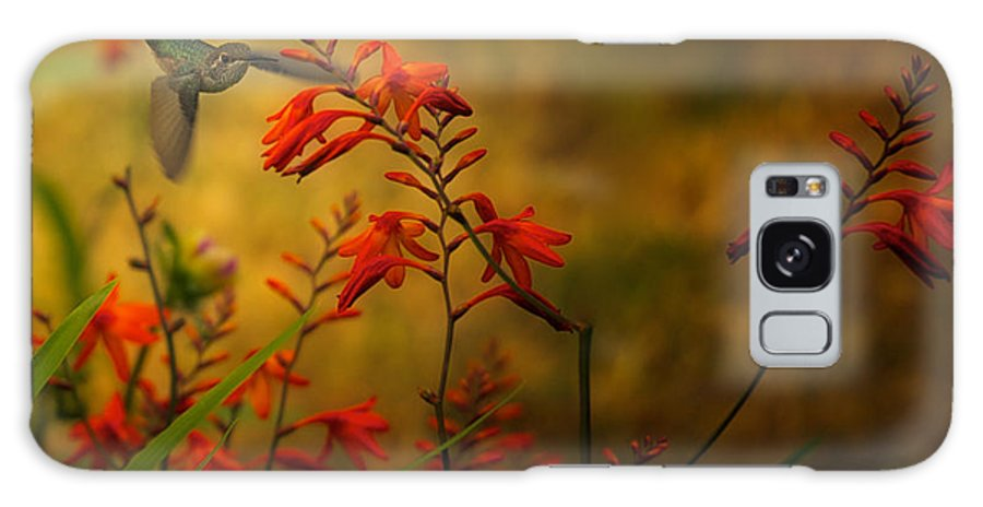 Humming Birds Galaxy S8 Case featuring the photograph Visitor by Diane Smith