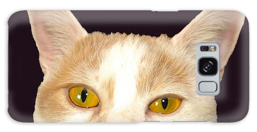 Cat Galaxy S8 Case featuring the photograph Waching You by Dennis Dugan