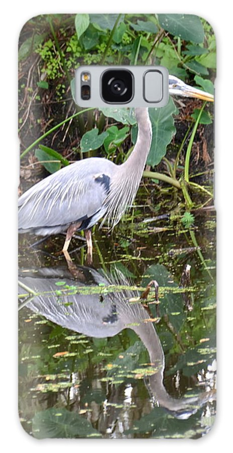 Heron Galaxy S8 Case featuring the photograph Wading Reflection by Carol Bradley