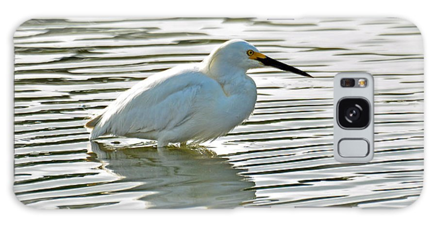 Wildlife Galaxy S8 Case featuring the photograph Wading Snowy Egret by Paul Weiss
