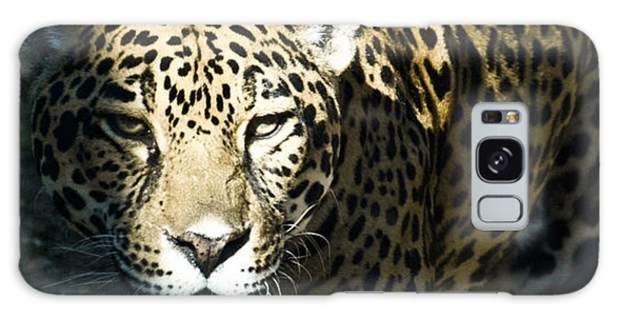 Cat Galaxy S8 Case featuring the mixed media Waiting For Dinner by Trish Tritz