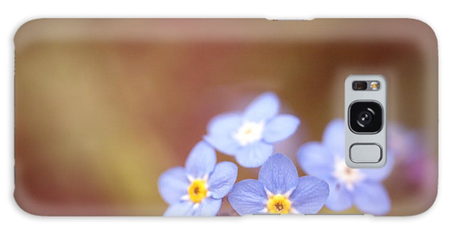 Forget-me-not Galaxy S8 Case featuring the photograph Waiting by Rachel Mirror