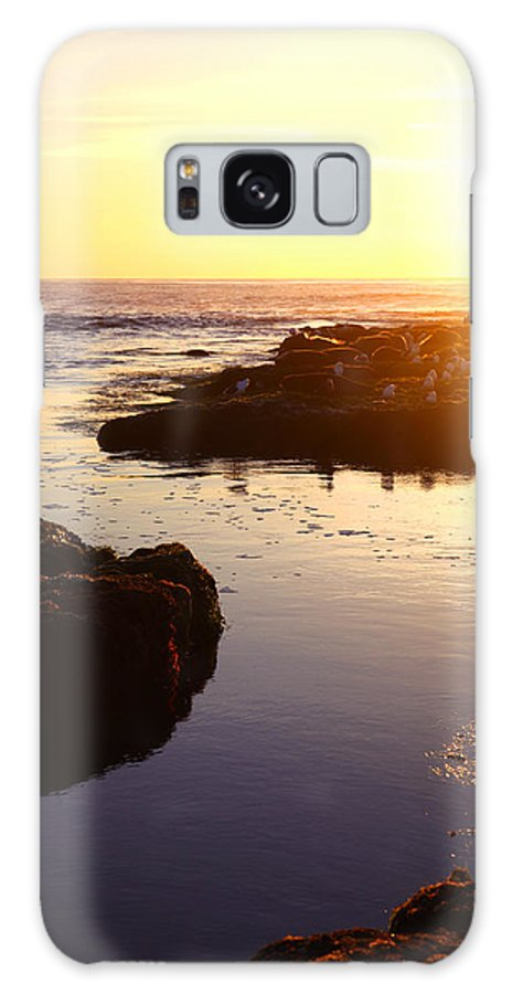 Beach Galaxy S8 Case featuring the photograph Washing Out by Andrew Rossman