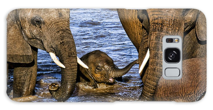 Baby Elephant Elephants Mothers Protective Water Crossing Kenya Africa Galaxy S8 Case featuring the photograph Watchful Eye by Wendy White