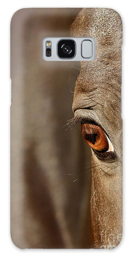 Animal Galaxy S8 Case featuring the photograph Watchful by Michelle Twohig
