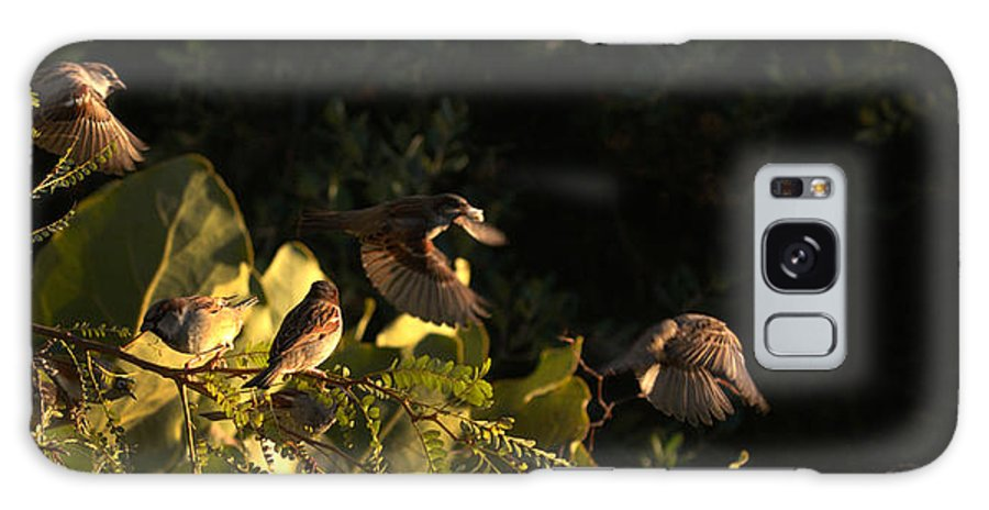 Galaxy S8 Case featuring the photograph Watching A Fly-by by Alan Marchant