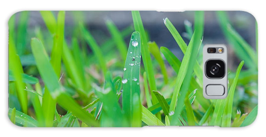 Water Galaxy S8 Case featuring the photograph Water Drops On The Grass 0007 by Terrence Downing