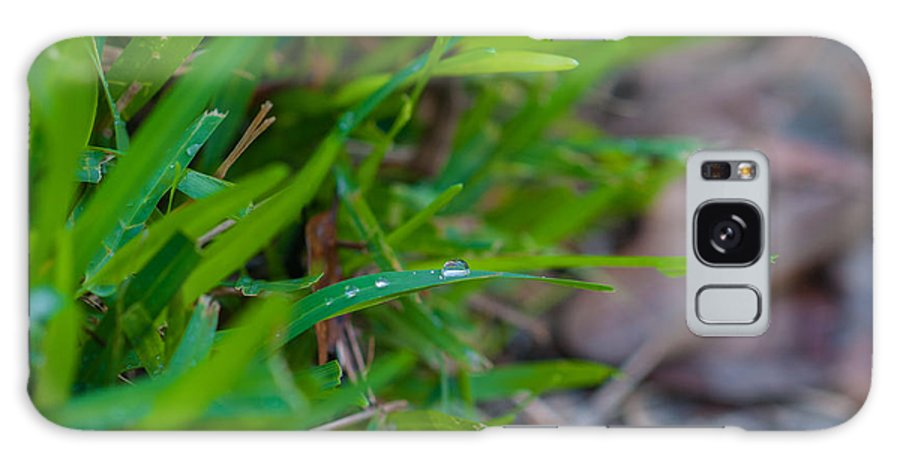 Water Galaxy S8 Case featuring the photograph Water Drops On The Grass 0012 by Terrence Downing