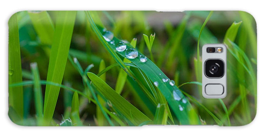 Water Galaxy S8 Case featuring the photograph Water Drops On The Grass 0015 by Terrence Downing
