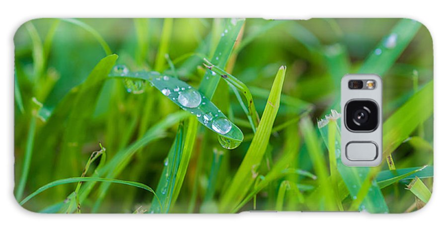Water Galaxy S8 Case featuring the photograph Water Drops On The Grass 0018 by Terrence Downing