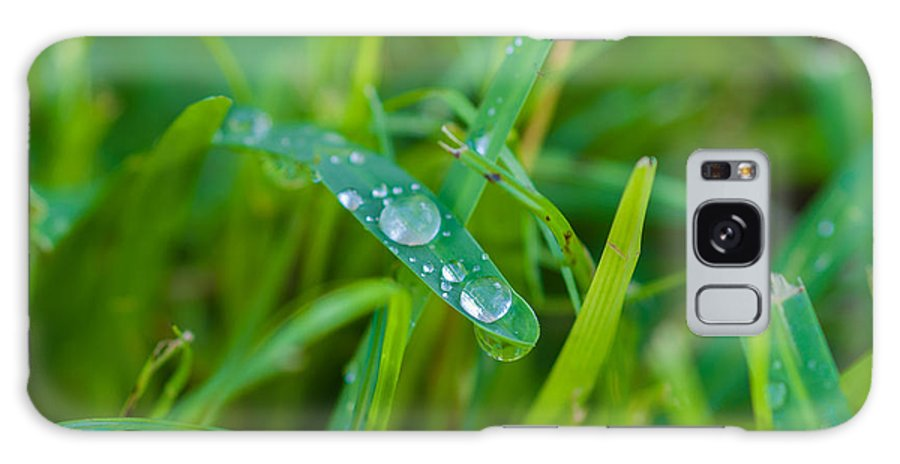 Water Galaxy S8 Case featuring the photograph Water Drops On The Grass 0019 by Terrence Downing