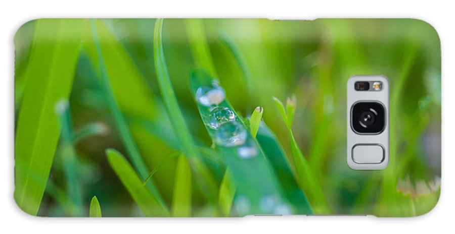 Water Galaxy S8 Case featuring the photograph Water Drops On The Grass 0021 by Terrence Downing