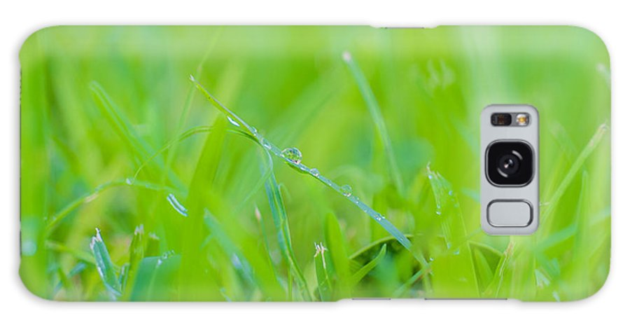Water Galaxy S8 Case featuring the photograph Water Drops On The Grass 0027 by Terrence Downing