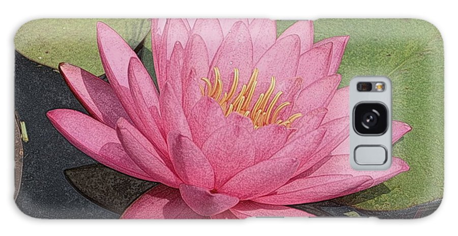 Water Lilies Galaxy S8 Case featuring the photograph Water Lily And Guest by Dave Wangsness