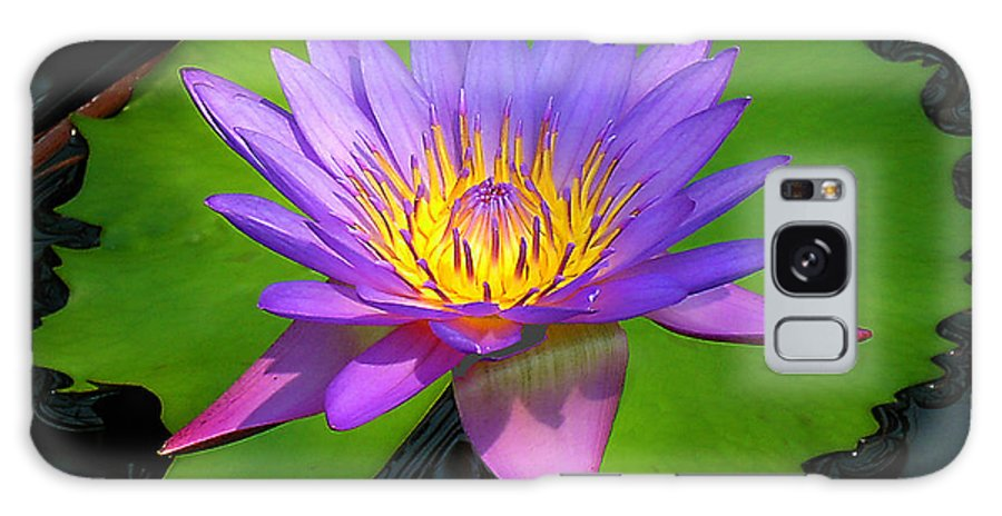 Water Lily Galaxy S8 Case featuring the photograph Water Lily by Ben Lavitt