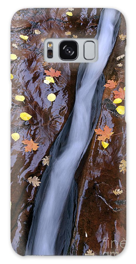 Zion National Park Utah Parks Water North Creek Subway Trail Trails Landscape Landscapes Rock Autumn Leaves Fall Color Leaf Galaxy S8 Case featuring the photograph Water Ribbon by Bob Phillips